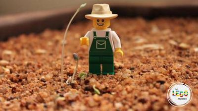 <p>A female farmer is quickly earning a legion of devoted online fans after rendering her agricultural exploits in Lego form.</p><p></p>