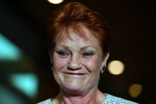 Pauline Hanson will help lead a parliamentary inquiry into family law even after launching an extraordinary attack against women who she claims are lying about domestic violence in the family courts.
