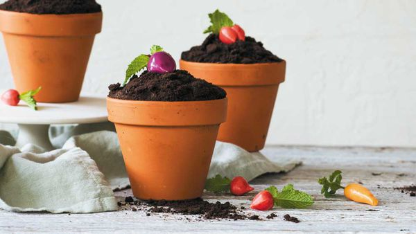 Vegetable garden pot cupcakes. Image: Sweet! Celebrations by Elise Strachan (Murdoch Books)