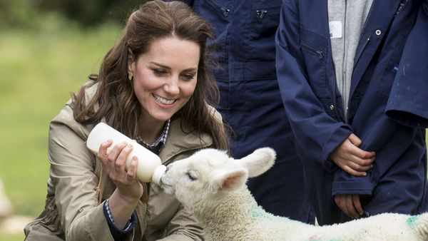 Duchess of Cambridge farm