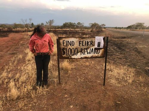 Ashleigh and her friends have travelled to Halls Creek and are searching for Flikr. They've set a reward for her return.
