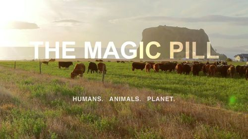 The Magic Pill is a new documentary.