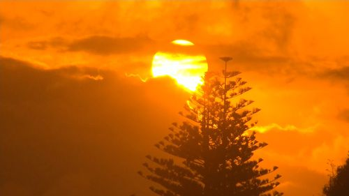 A spectacular sunrise on the Sunshine Coast. (9NEWS)