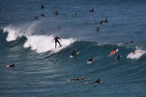 Surfers would be forced into a small area of the iconic Bondi Beach if a government motion is passed. Picture: AAP.