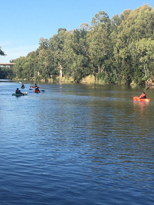 Dubbo locals beat the heat with kayaks on the Macquarie River at 9am today. (Picture: Melissa Blomeley)