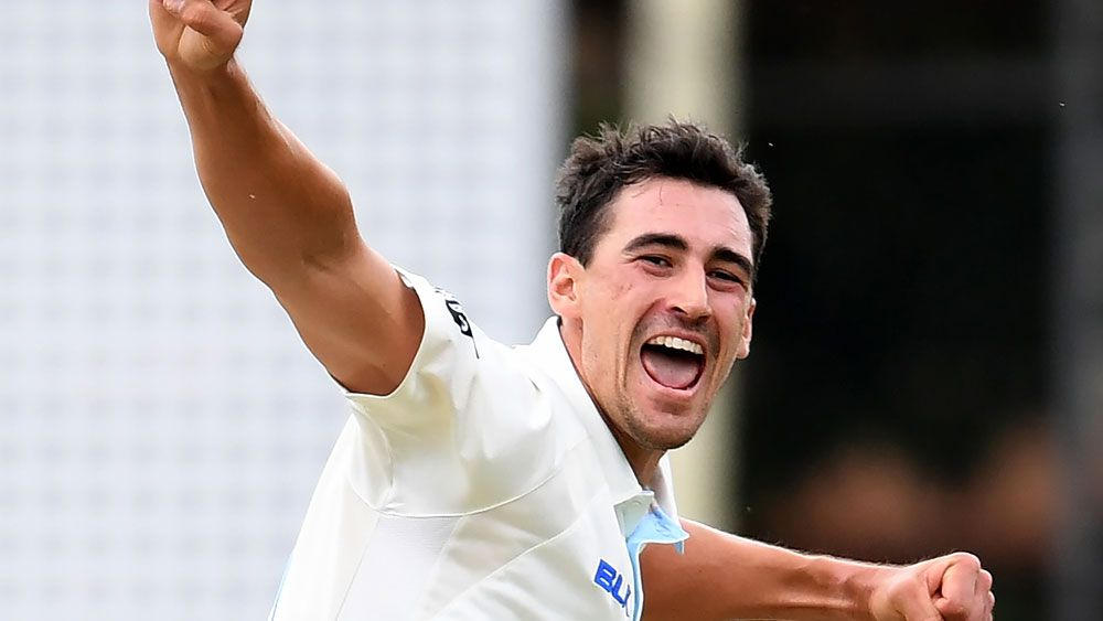 Starc and Smith star for NSW in Shield