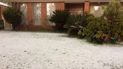 Hail blanketing the front yard of a Sydney home. (Twitter - @zainuba_ali)