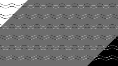 New optical illusion reveals you probably have 'curvature blindness'