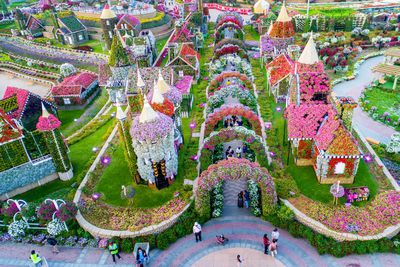 The world's largest flower garden is thriving in the ... - photo#14