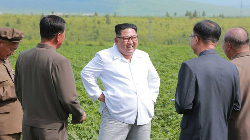 North Korean dictator Kim Jong-un in a potato field. (KCNA/AAP)