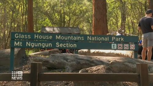Rock climber killed in 40 metre plunge from Glass House Mountains
