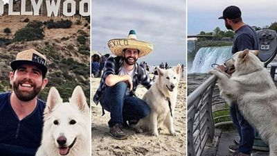 The Aussie travelling the world - with his dog