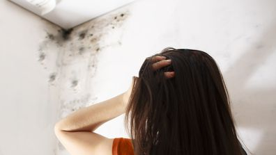 Mould can be troublesome to people