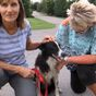 Woman quits job to search for missing dog