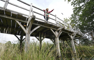 Britain Pooh Bridge Auction: Silke Lohmann of Summers Place Auctions stands on the original Poohsticks Bridge from Ashdown Forest, featured in AA Milne's Winnie the Pooh books and EH Shepard's illustrations.