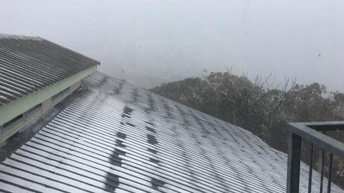 A sprinkling of white in Mt Buller. (Facebook)