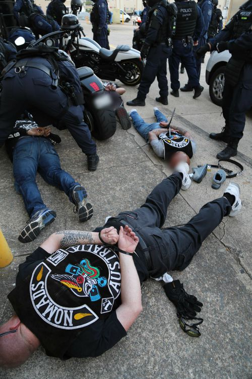 Police said more arrests are expected. (NSW Police)