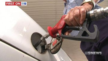 VIDEO: Government's fuel check website shows where you can save
