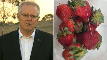 PM says strawberry crackdown has 'bipartisan support'