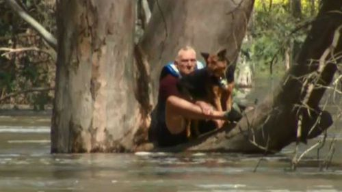 The man and his dog were paddle boarding when they became trapped. (9NEWS)