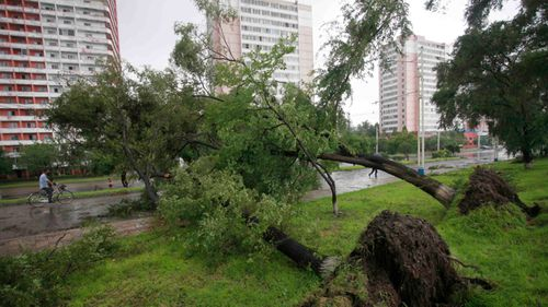 Four-year-old boy among three killed after wild storms lash Victoria