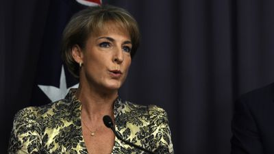 """<p>Michaelia Cash was appointed  Minister for Women, Minister for Employment, and Minister Assisting the Prime Minister for the Public Service.</p><p>She replaces former prime minister Tony Abbott as Minister for Women, and was promoted from the outer ministry.</p><p>""""She has led the government's policy development on women's issues, especially in regards to our response to the scourge of domestic violence,"""" Mr Turnbull said.</p><p>(AAP)</p>"""
