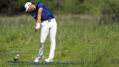 <strong>Dustin Johnson</strong>