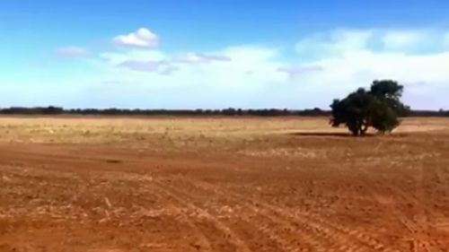 Brad Shephard, 47, has compared footage of floods which hit his land near Forbes two years ago, with the same spot this week, which is arid and bare.