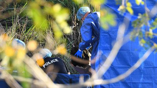 Police search the crime scene at Kangaroo Point.