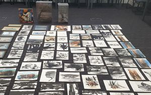 Cleaner charged with alleged theft of $160,000 artworks from burnt-out NSW shop