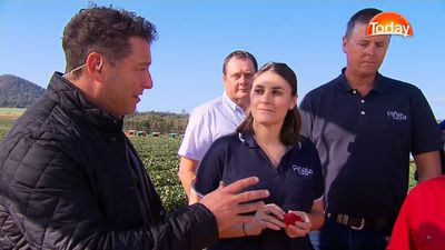 Strawberry farm already fitted with metal detectors still open for business