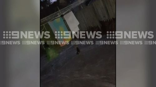 It is the second time in 12 months this main has burst. Picture: 9NEWS