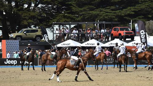 Polo is played on the beach in Portsea, in the electorate of Flinders.