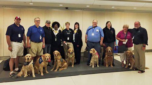 (Facebook/Lutheran Church Charities Comfort Dogs)
