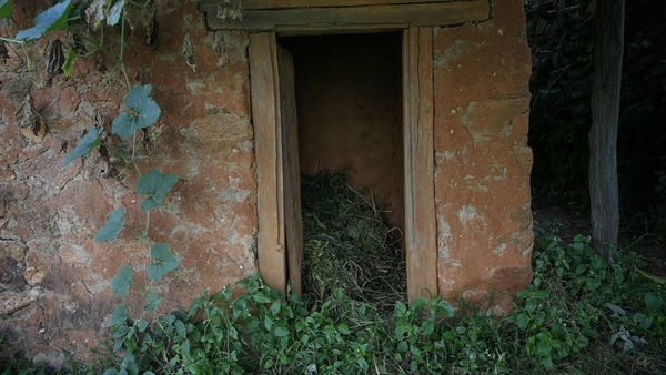 Menstruation hut death
