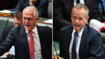 'Grovelling sycophant': Turnbull unleashes spray on Shorten