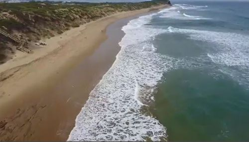 Victorian Surf Coast beaches remain under observation after reports of shark attack dismissed