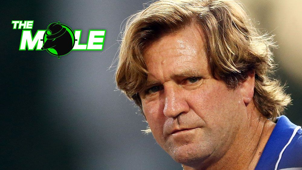 NRL news: Former NRL coach Mick Potter in line to replace Des Hasler at Canterbury Bulldogs says The Mole