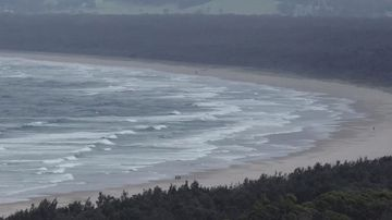 Surf lesson ends in grisly shark attack