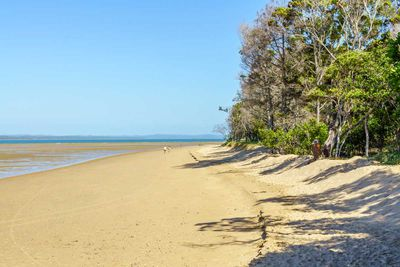 Hervey Bay, Qld (65 winners)