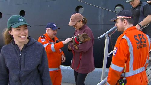 Animals evacuated from the Mallacoota bushfires arrive on board Navy ships at Port Hastings.