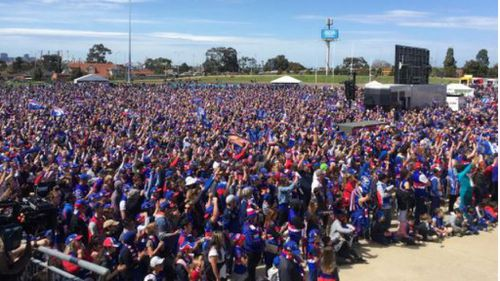 A huge crowd packs Whitten Oval to celebrate their team's win. (9NEWS/Clint Stanaway)