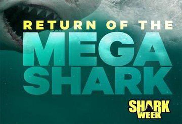 Return Of The Megashark
