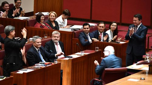 The Senate chamber erupted with applause after Senator Smith's bill was passed. (AAP)