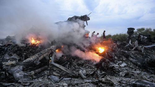 Germany claims Ukraine rebels downed MH17 'with seized missiles'