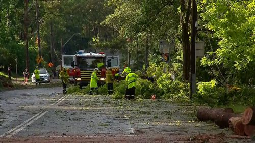 SES Crews are busy across the city.