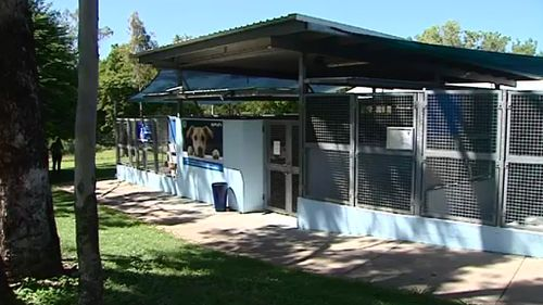 The RSPCA Townsville shelter is bordered by the council pound. (9NEWS)