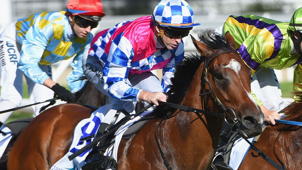 Connections of Fell Swoop will be hoping to finally crack it a Group 1 win. (Getty Images)