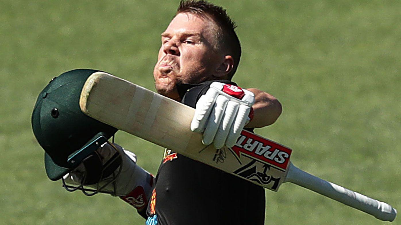 David Warner claps back at veteran NZ bowler Tim Southee with cheeky sledge