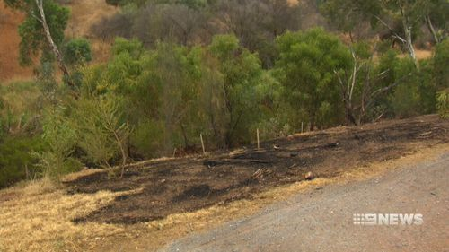 The man was charged with three counts of arson and one count of causing a bushfire.
